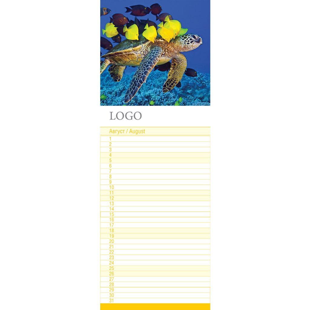 Под водата 2018 – 13 листа